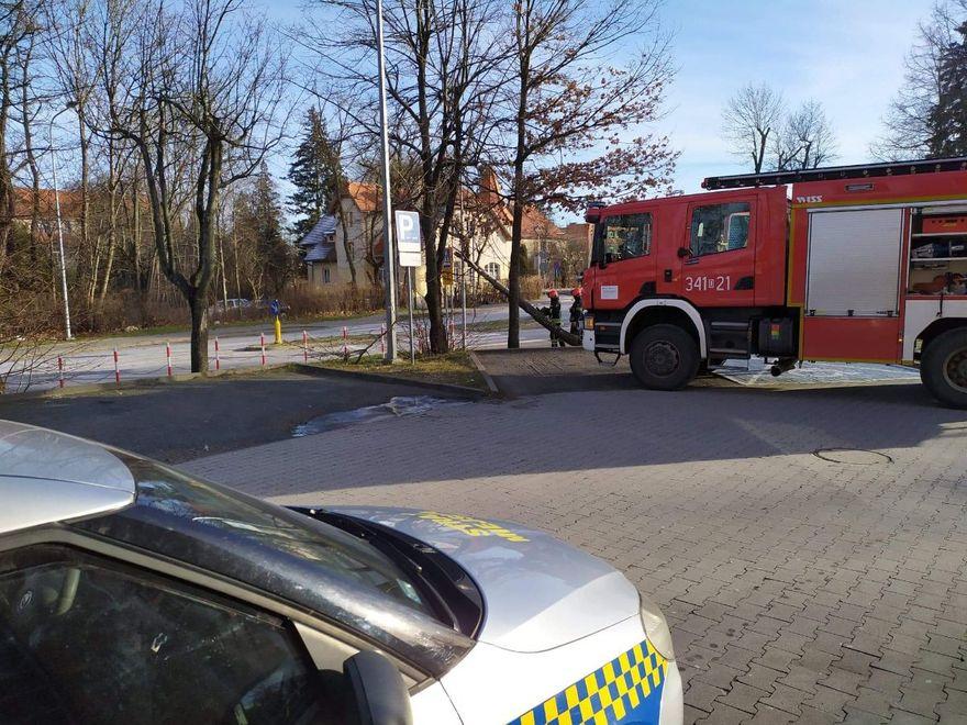Jelenia Góra: Działania strażników w świąteczny weekend