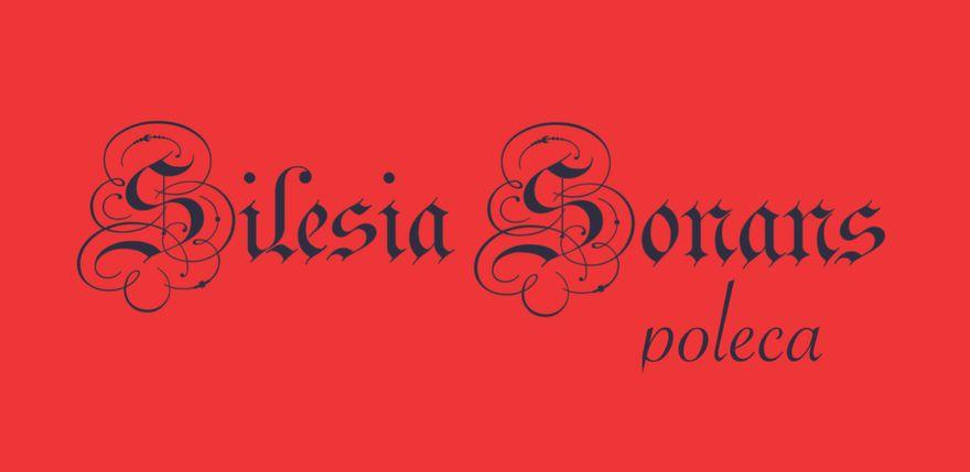 Jelenia Góra: Silesia Sonans poleca (8)