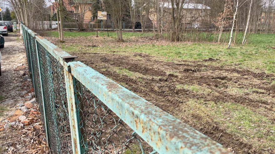 Jelenia Góra: Bez zezwolenia ścięto w Cieplicach 50 drzew