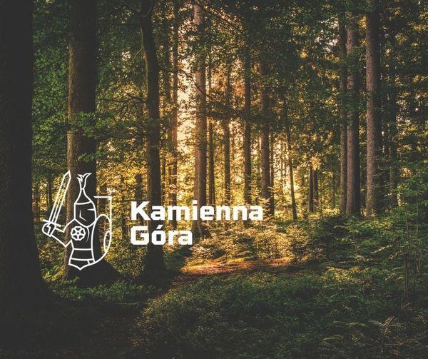 Kamienna Góra: W trosce o drzewostan