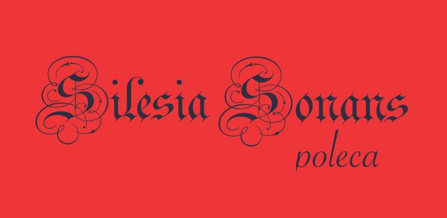 Jelenia Góra: Silesia Sonans poleca (10)