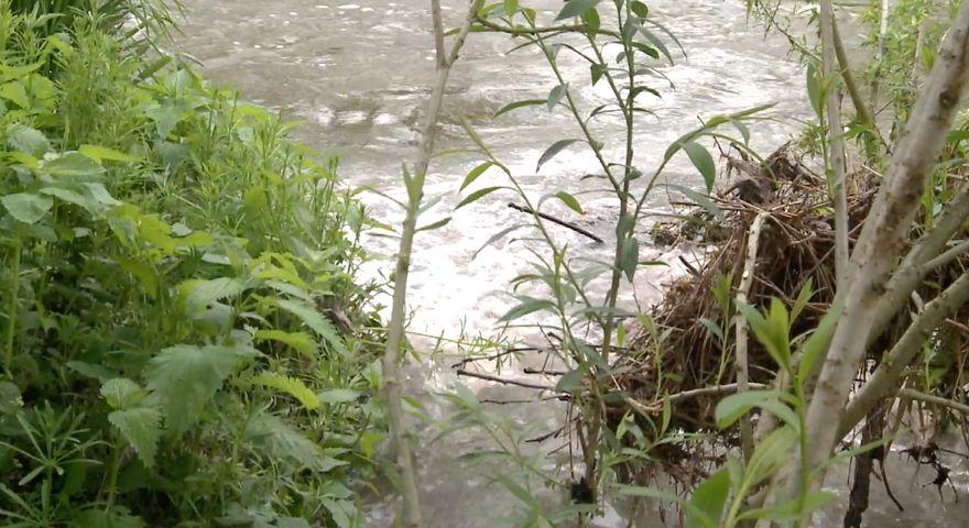 Jelenia Góra: (Niczyje) ścieki w Bobrze
