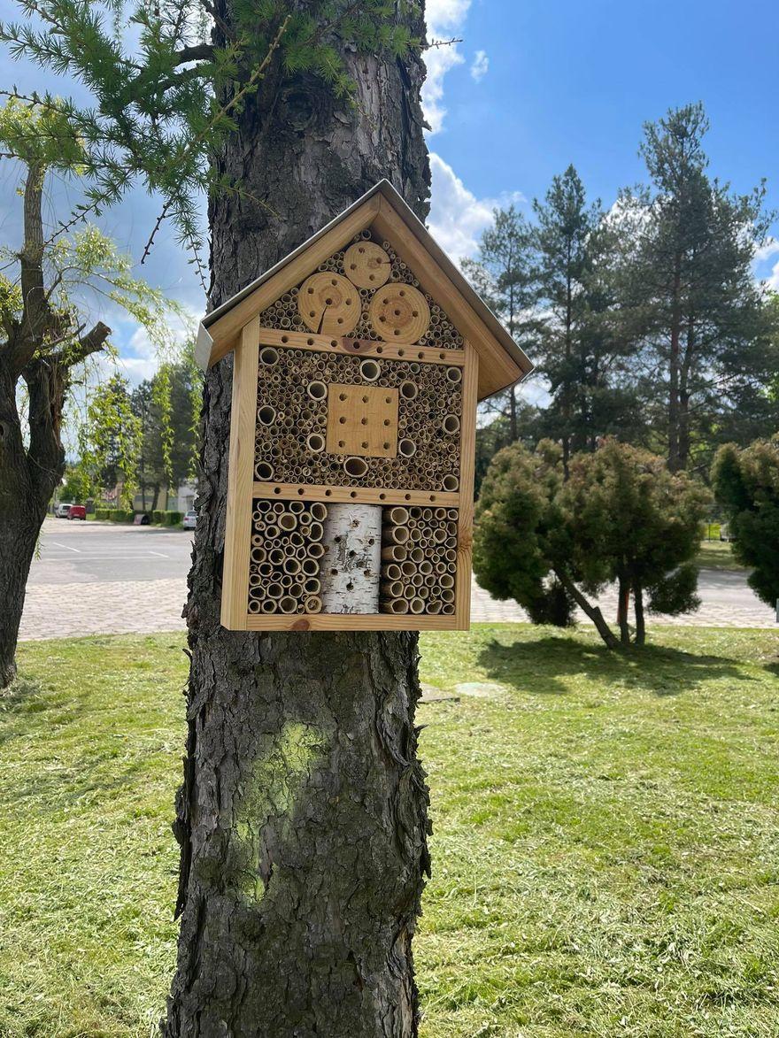 Jelenia Góra: MZK dla owadów