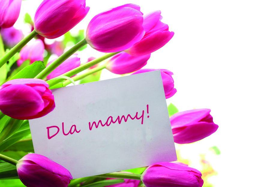 Kraj: Dziś Dzień Matki