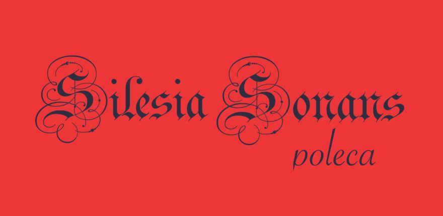 Jelenia Góra: Silesia Sonans poleca (12)