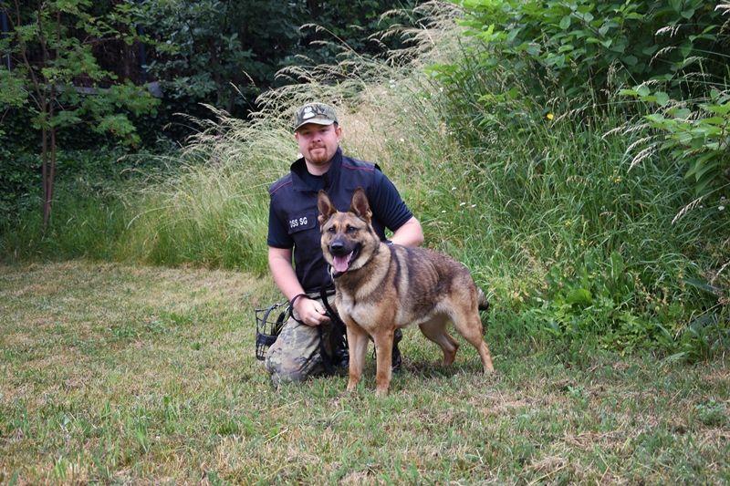 Region: Nowe psy trafiły do służby w straży granicznej
