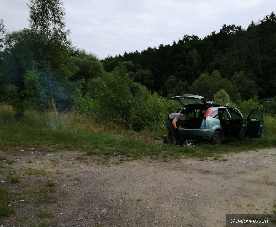 Jelenia Góra: Dzięki interwencji mieszkanki sprawca został ukarany za wypalanie kabli