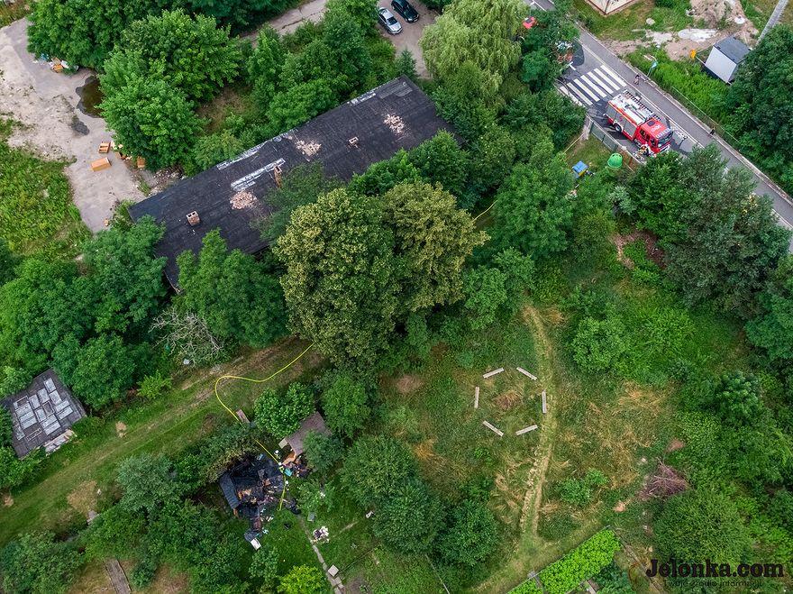 Jelenia Góra: Pożar altanki przy Krakowskiej
