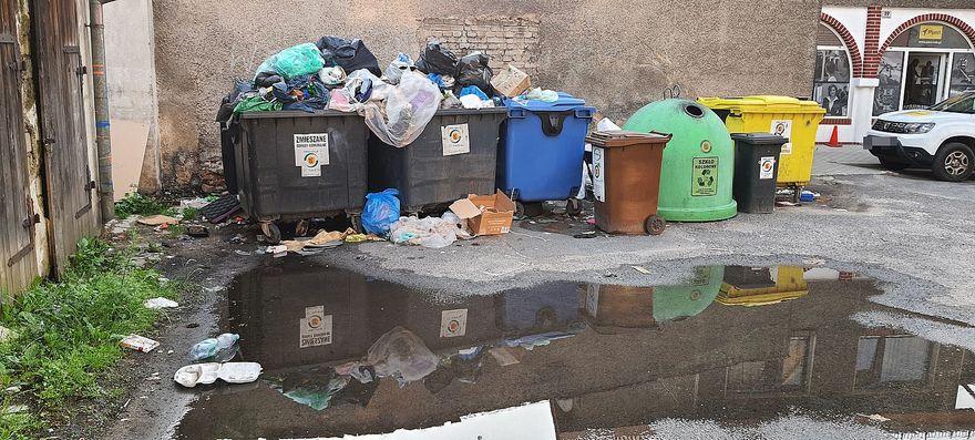 Jelenia Góra: Śmietnik to nie toaleta
