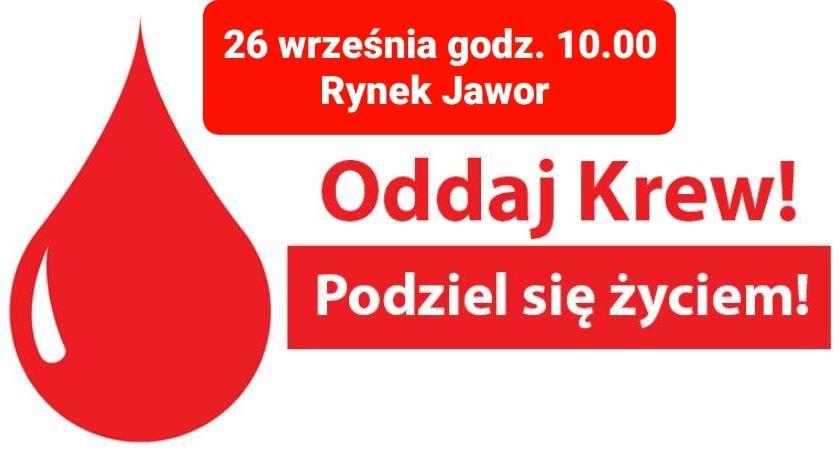 Jawor: Oddaj krew!