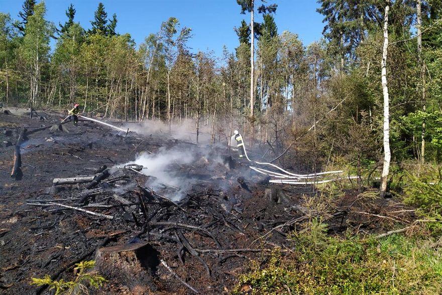 Gmina Marciszów: Palił się las