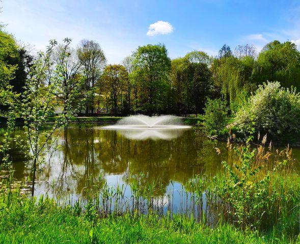 Lwówek Śląski: Punkt szczepień w parku