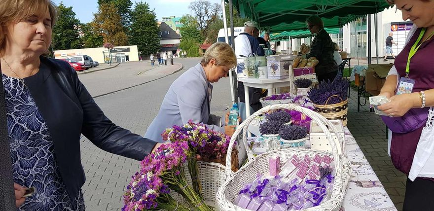 Kowary: Kwiatowy festiwal