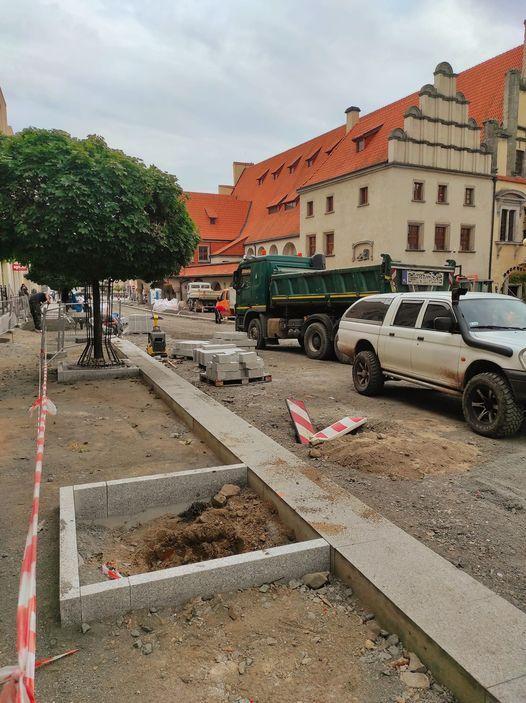 Lwówek Śląski: Przybędzie drzew