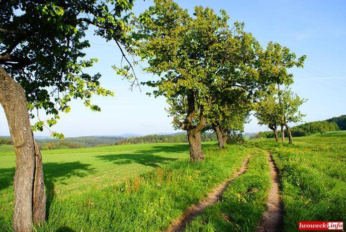 Dolny Śląsk: Piękna wieś dolnośląska