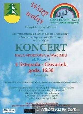 REGION, Walim: Dziś koncert w Walimiu