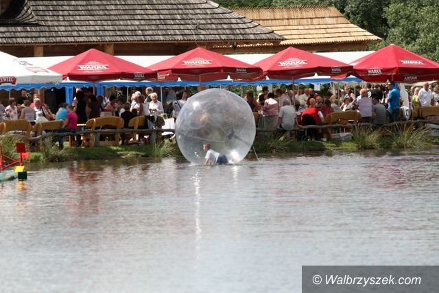 Dziećmorowice: Festiwal sera w Dziećmorowicach