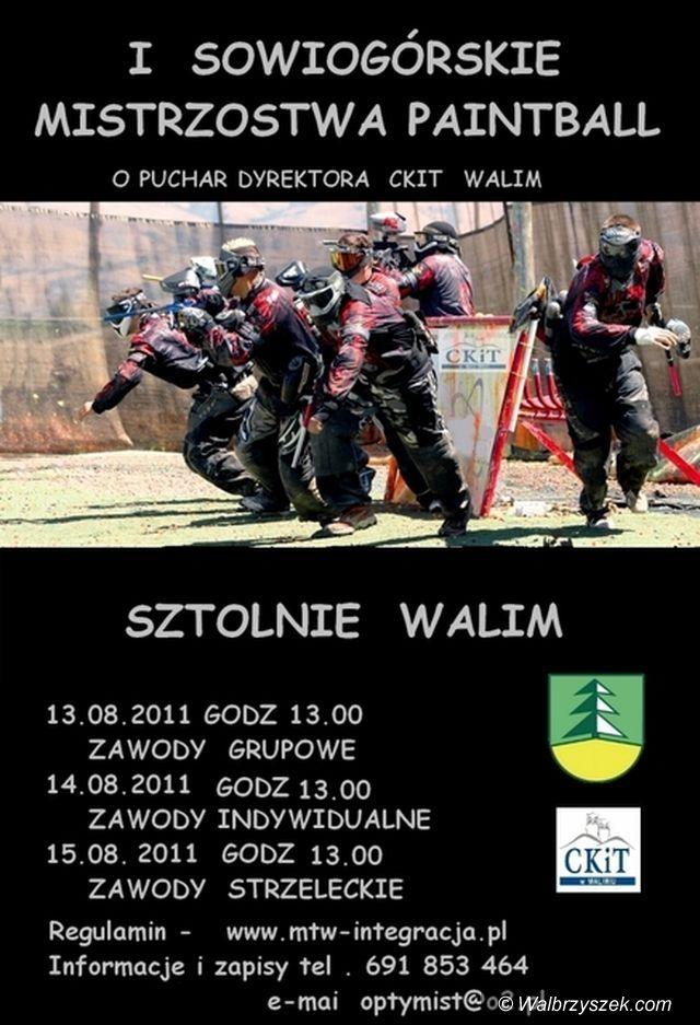 Walim: I Sowiogórskie Mistrzostwa Paintball