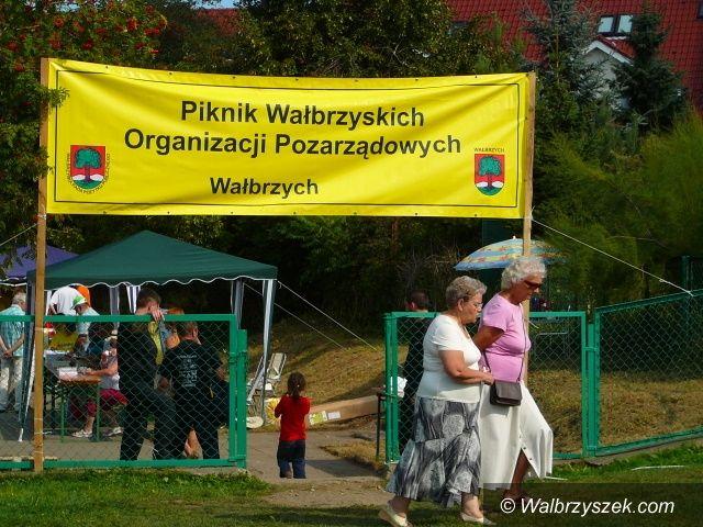Wałbrzych: II Piknik Wałbrzyskich Organizacji Pozarządowych  za nami