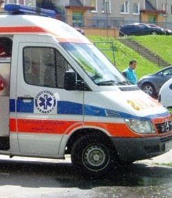 REGION, Dziećmorowice: 5–latka z Dziećmorowic została pogryziona przez psa