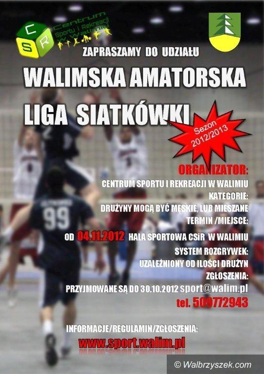 Walim: Rusza Sowiogórska Amatorska Liga Siatkówki w Walimiu