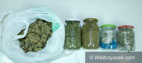 Wałbrzych: Zabezpieczyli blisko pół kilograma marihuany