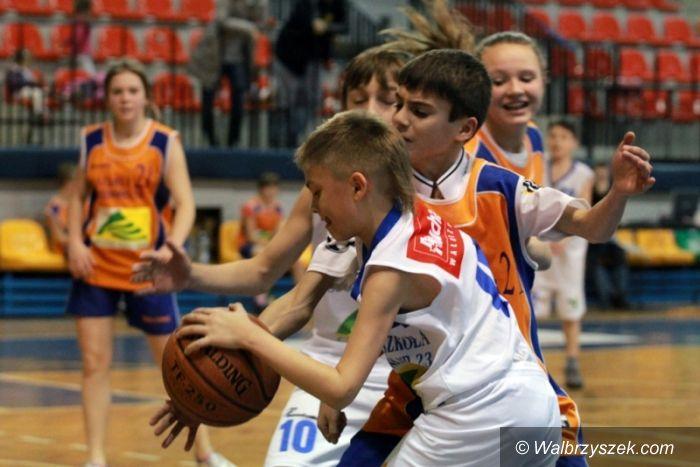 Wałbrzych: Toyota Basket Liga