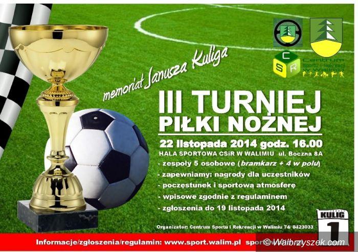 Walim: Powalczą w piłkarskim turnieju