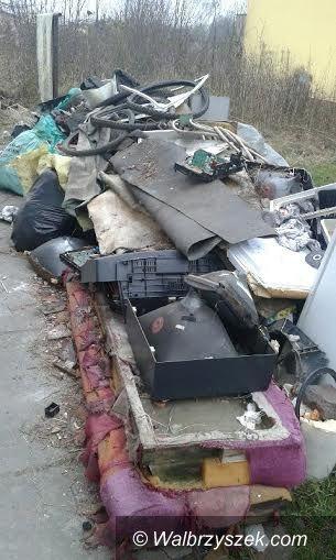 Wałbrzych: Gromadziła śmieci na terenie swojej posesji