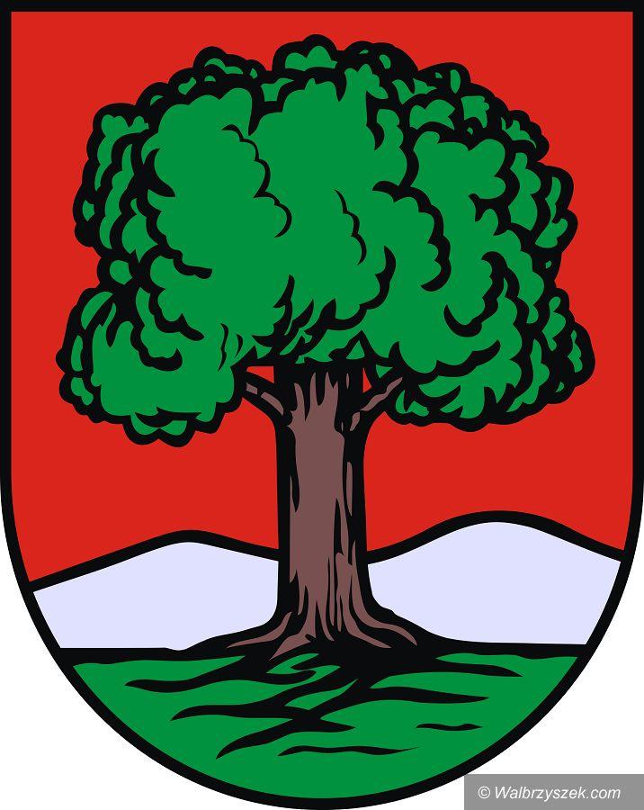 Wałbrzych: Za pół roku wybory samorządowe. Kto wystartuje na fotel prezydenta Wałbrzycha?