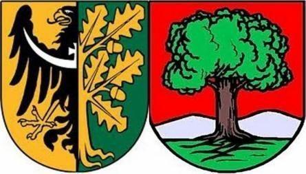 Wałbrzych/powiat wałbrzyski: Znamy kandydatów na prezydentów, burmistrzów i wójtów w Wałbrzychu i powiecie wałbrzyskim