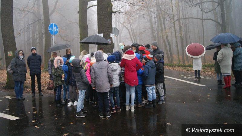 Wałbrzych: Park Rusinowa zmienił swoje oblicze