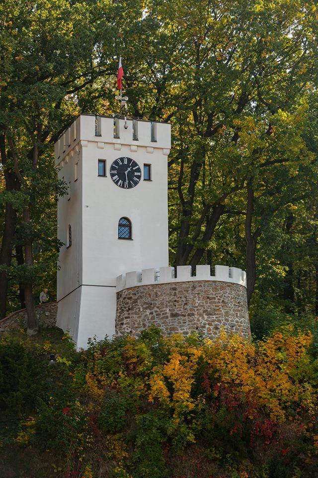 REGION, Szczawno-Zdrój: Wylicytował Wieżę Annę dla swojej małżonki