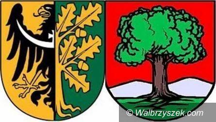 Wałbrzych/powiat wałbrzyski: Sprawdziliśmy poziom przestępczości w Wałbrzychu i w gminach powiatu wałbrzyskiego