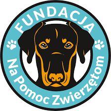 """powiat wałbrzyski: Fundacja """"Na Pomoc Zwierzętom"""" instruuje, jak pomóc poszkodowanym czworonogom"""