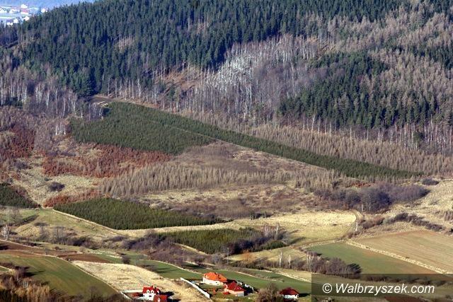 REGION, Szczawno-Zdrój: Szczawno–Zdrój walczy o odzyskanie szczytu Chełmca