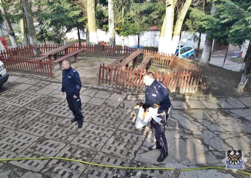 Wałbrzych: Policjanci ruchu drogowego uratowali psa prawdopodobnie potrąconego przez samochód