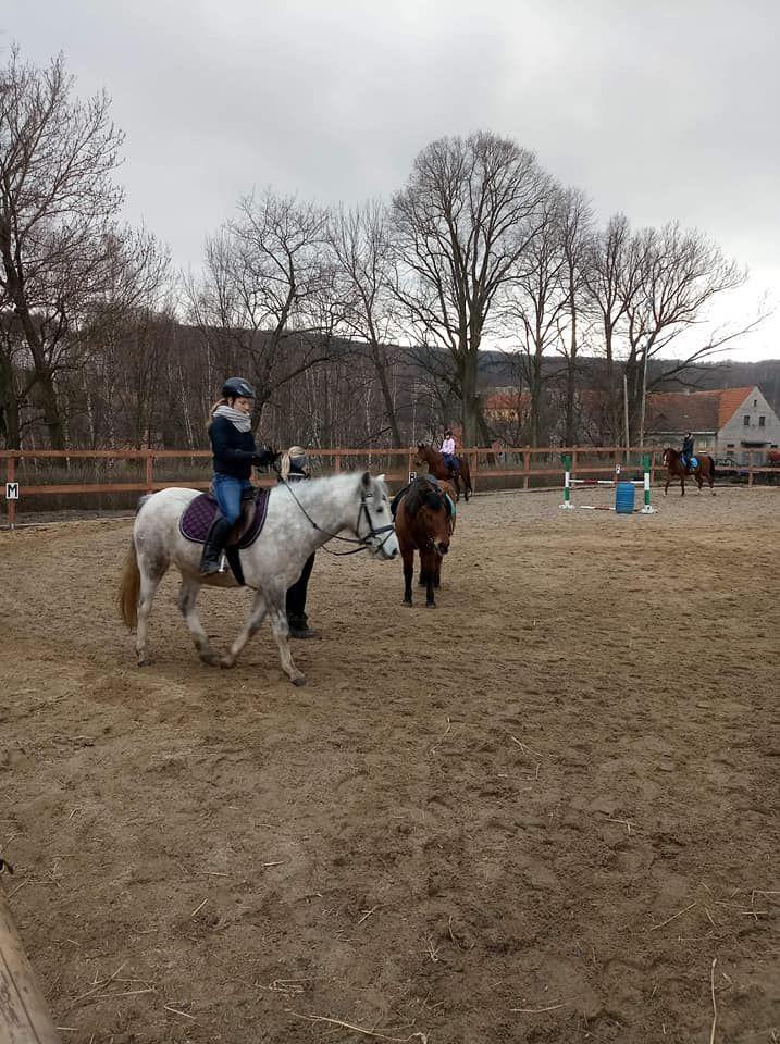 REGION, Dziećmorowice: Otwarcie sezonu jeździeckiego