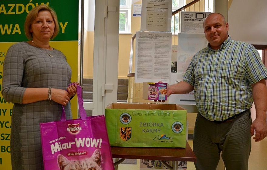 powiat wałbrzyski: Ruszyła zbiórka karmy dla psów