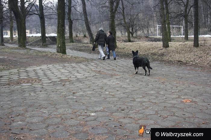 REGION, Szczawno-Zdrój/Wałbrzych: Psi wybieg