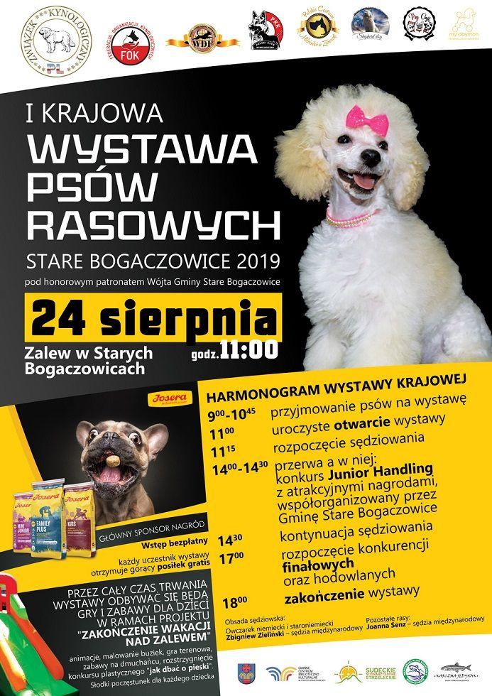 REGION, Stare Bogaczowice: Wystawa psów
