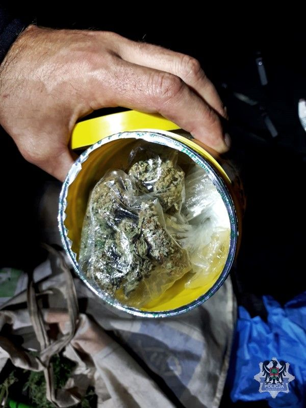 Wałbrzych: Człowiek z marihuaną