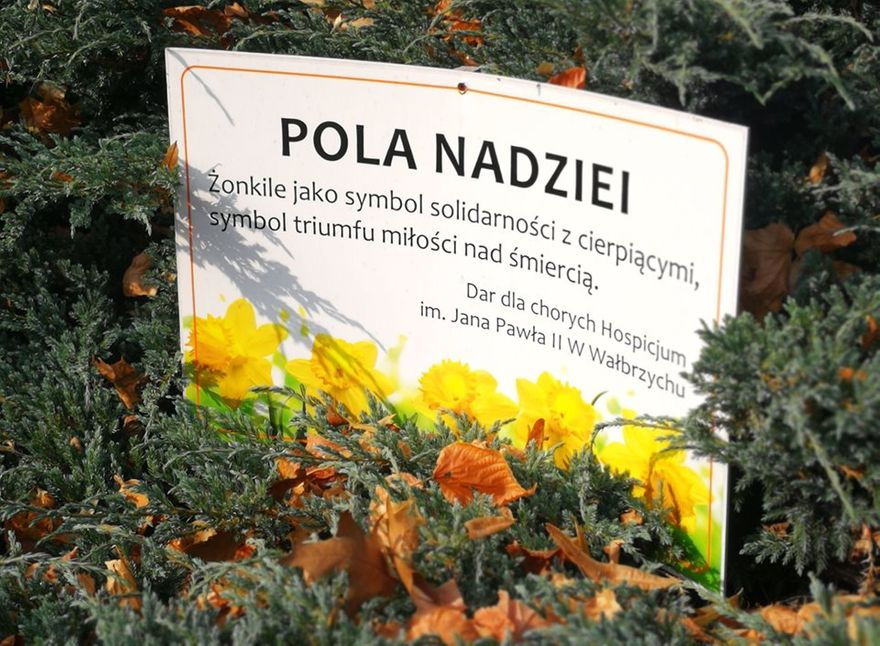 REGION, Szczawno-Zdrój: Szczawno z Hospicjum