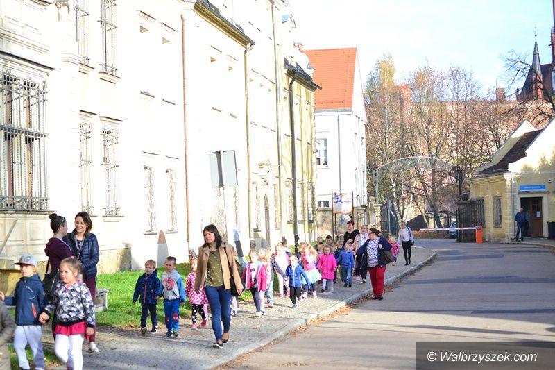 Wałbrzych: Festiwal Nauki