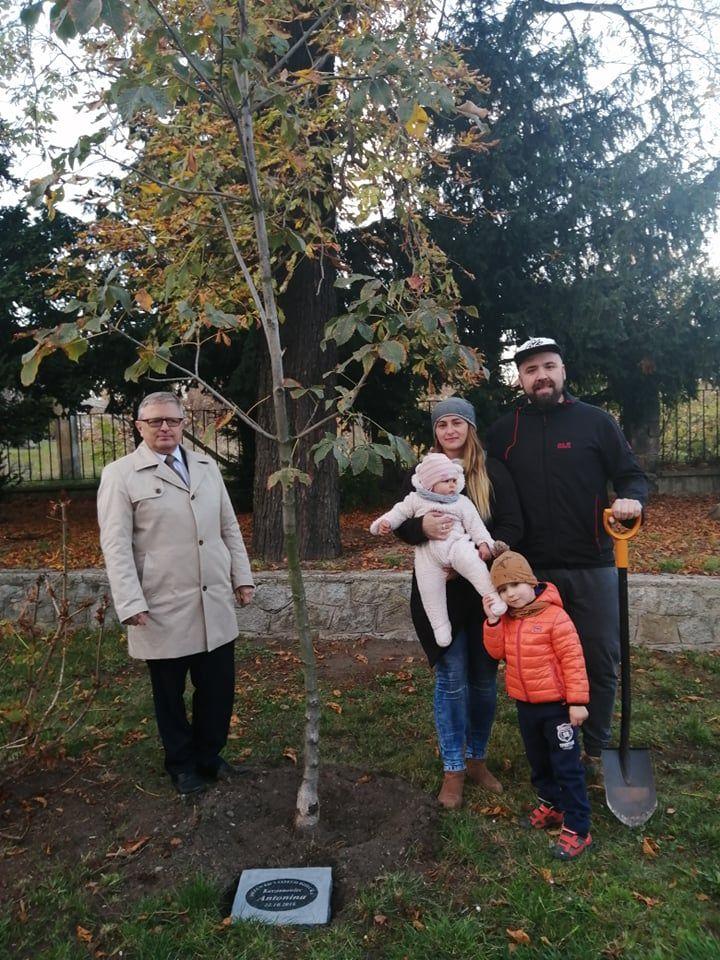 REGION, Szczawno-Zdrój: Drzewka dzieci