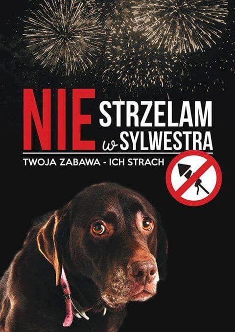 Wałbrzych/powiat wałbrzyski: Sylwester bez fajerwerków