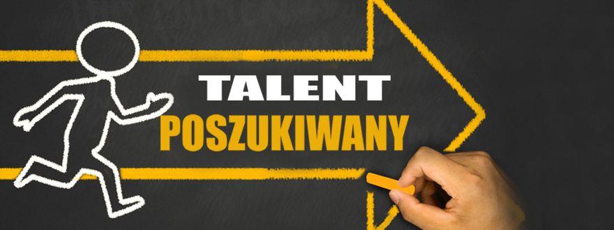 Wałbrzych/powiat wałbrzyski: Wałbrzych Ma Talent