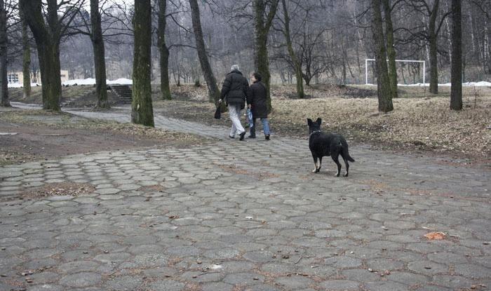Wałbrzych/powiat wałbrzyski: Czy seniorzy przestrzegają zasad?