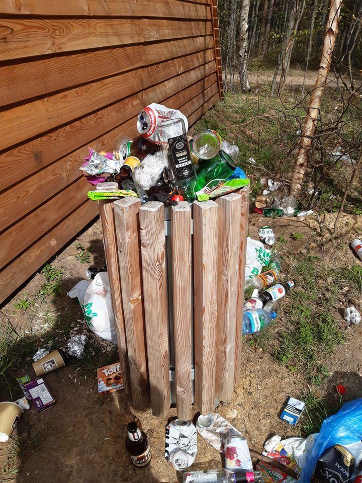 Wałbrzych/REGION: Śmieci w lasach