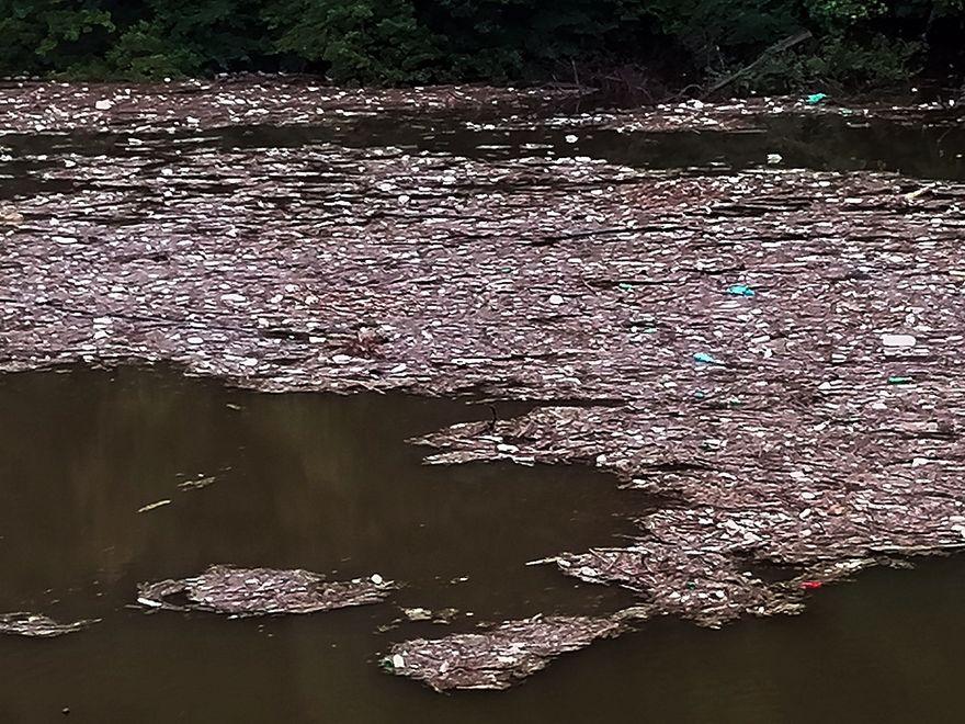 REGION, Zagórze Śląskie: Zanieczyszczone jezioro